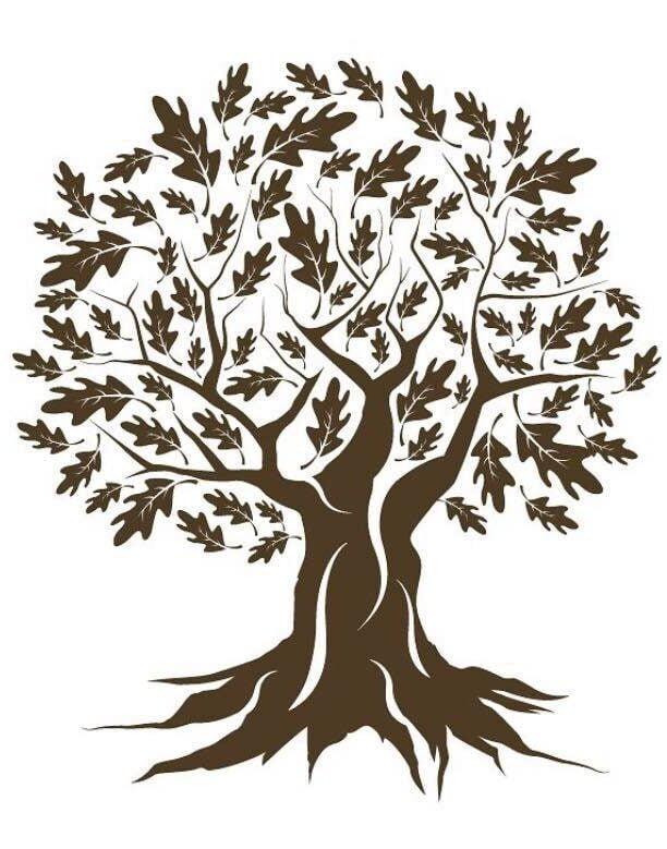 devizes tree services logo